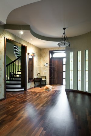 Interior of entrance hall with sleeping dog