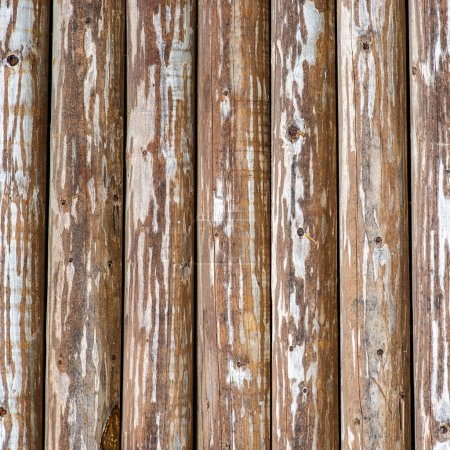 Old bare fence