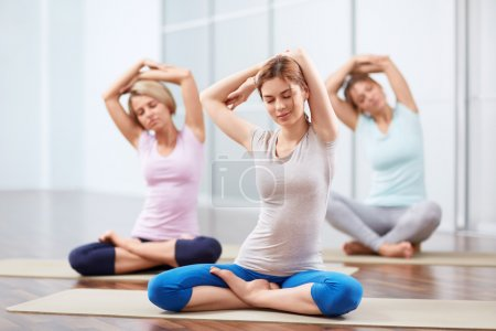 Photo for Young attractive girls do yoga - Royalty Free Image
