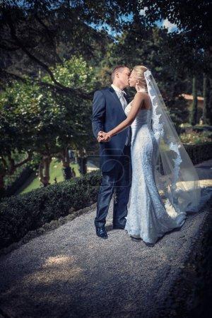 Photo pour Embrasser un couple marié dans le parc - image libre de droit