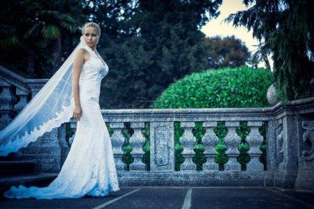 Photo pour Belle jeune mariée dans une robe blanche - image libre de droit