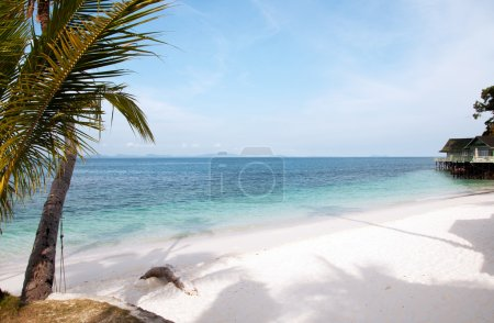 Landscape of tropical beach