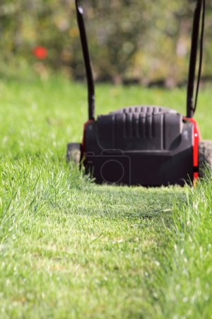 Photo for Lawn-mower cuts a high green grass in the garden - Royalty Free Image
