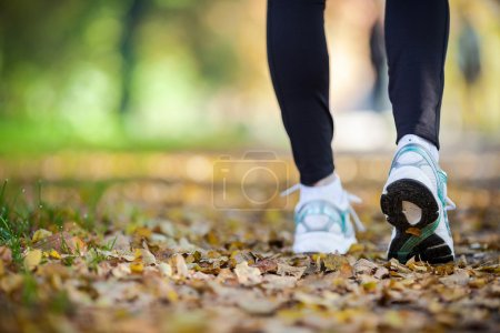 Photo for Walking in autumn scenery, exercise outdoors - Royalty Free Image