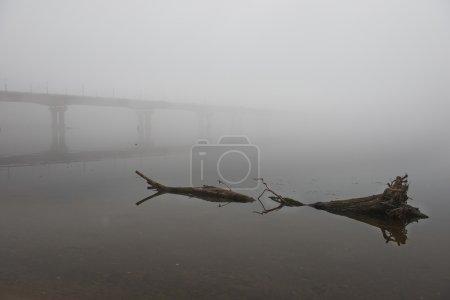 мост через реку в туманное утро