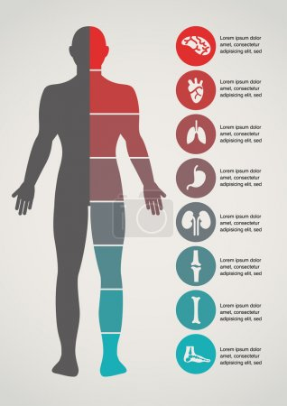 Illustration for Medical and healthcare icons and data infographic - Royalty Free Image