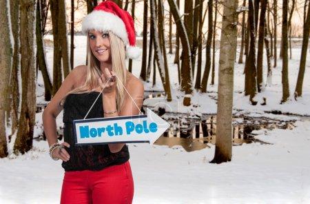 Beautiful woman elf