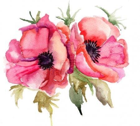 Photo for Stylized Poppy flowers illustration - Royalty Free Image