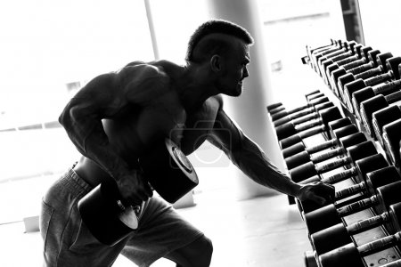 Photo for Fitness, bodybuilding. Powerful handsome man during workout - Royalty Free Image