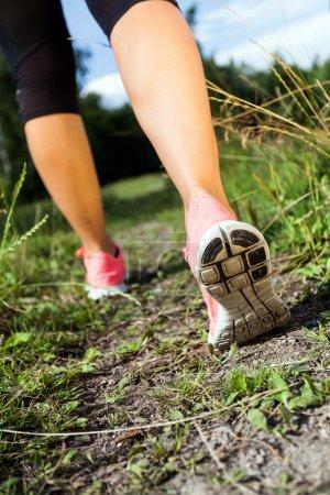 Photo pour Marcher ou courir jambes dans la forêt, l'aventure et l'exercice dans la nature estivale - image libre de droit