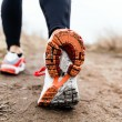 Walking or running legs sport shoes, fitness and e...