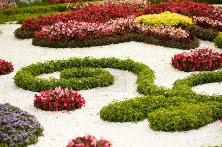 Spring flower garden background