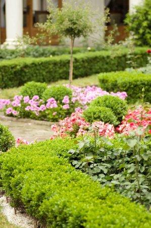 Foto de Jardín - Imagen libre de derechos