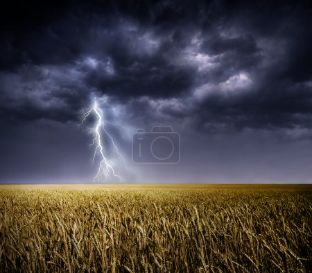 Dark stormy clouds over a field...