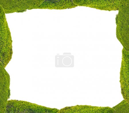 Green moss frame isolated on white background...