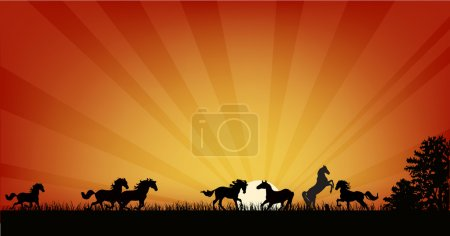 horse herd at orange sunset illustration