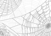 grey spider web background