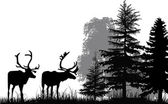 Deer silhouettes in forest