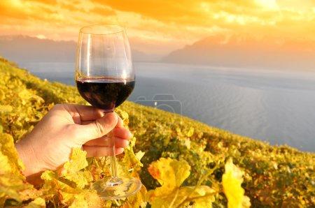 Wineglass in the hand against vineyards in Lavaux region, Switze