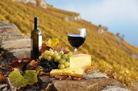 Photo pour Vin rouge, fromage et raisins sur la terrasse de vigne dans la région de lavaux, Suisse - image libre de droit