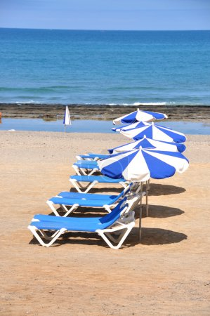 Sunbeds and umbrellas on the sandy beach of Tenerife island, Can