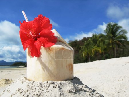 Coconut cocktail on the beach of Langkawi island, Malaysia