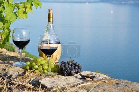 Vins et raisins