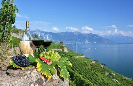 Red wine on the terrace vineyard in Lavaux region, Switzerland