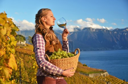 Girl with a basket full of grapes. Lavaux region, Switzerland