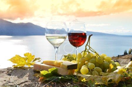 Photo pour Vin et raisins. Lavaux, Suisse - image libre de droit