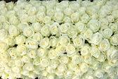 Skupina bílých růží, svatební dekorace