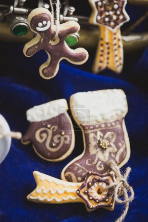 Homemade holiday cookies - gingerbread