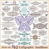 Vector set: 40 calligraphic design elements for menu or its