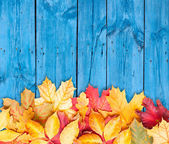 Autumn leaves over wooden background. Copy space.