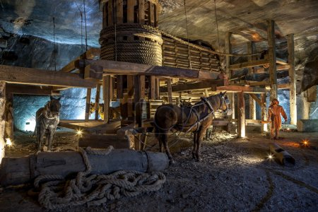 The hard work of men and horses in the Middle Ages shows how salt was mined