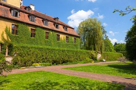 Green overgrown house