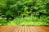 Wooden floor in forest.