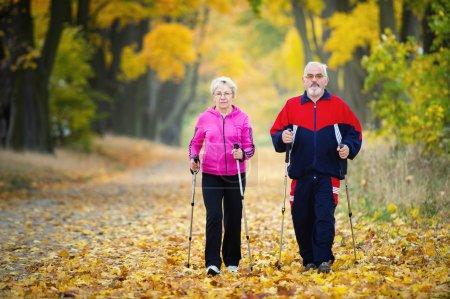 Photo pour Couple de personnes âgées faisant nordique marche dans le parc - image libre de droit