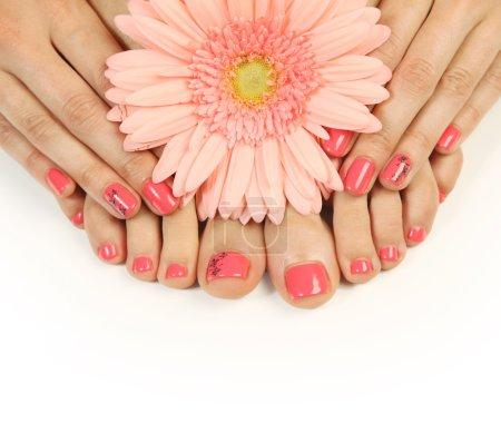 Photo pour Pédicure et manucure rose belle - image libre de droit