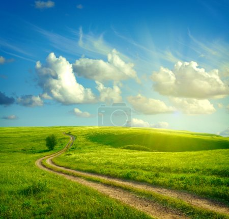 Photo for Summer landscape with green grass, road and clouds - Royalty Free Image