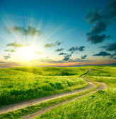 Nyári táj, a zöld fű, a közúti és a drámai ég