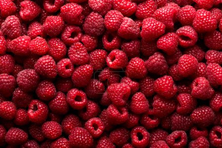 Photo pour Fond fruit framboise - image libre de droit