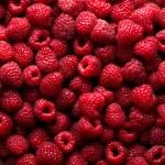 Raspberry fruit background...