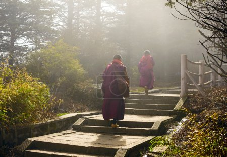 Photo for Sichuan, China - APRIL 12: Two monks climbing up to holy mountain Emei Shan - Royalty Free Image