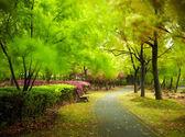 Zelené městský park. Šanghaj, Čína