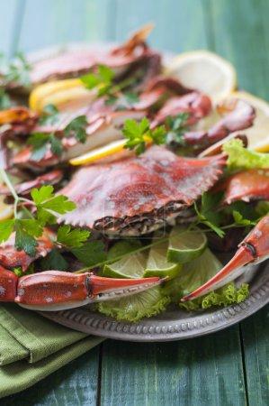 Photo pour Crabes cuits à la laitue et aux citrons - image libre de droit