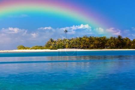 Photo for The tropical island with palm trees in the ocean and a rainbow over it - Royalty Free Image