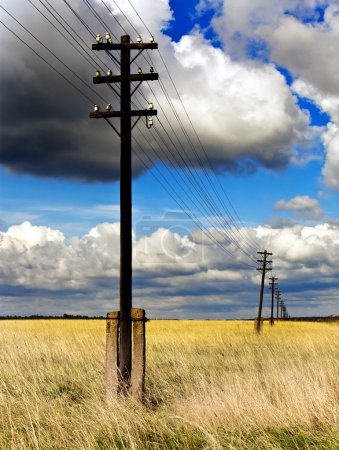 Old wooden poles - the line of electricity transmissions - in the field