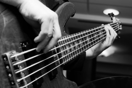 Photo for Musician playing on bass guitars. - Royalty Free Image