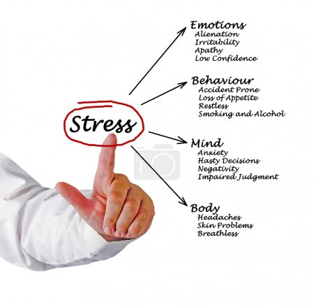 Photo for Diagram of stress consequences - Royalty Free Image